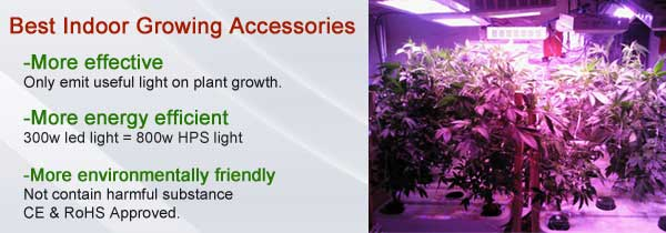 File:Why Use LED For Indoor Plants Lighting