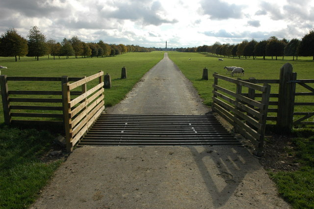 Avenue to Blenheim Palace - geograph.org.uk - 1011829