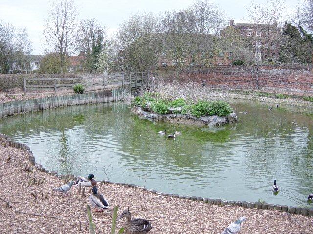 Duck Pond, Saffron Walden - geograph.org.uk - 154502