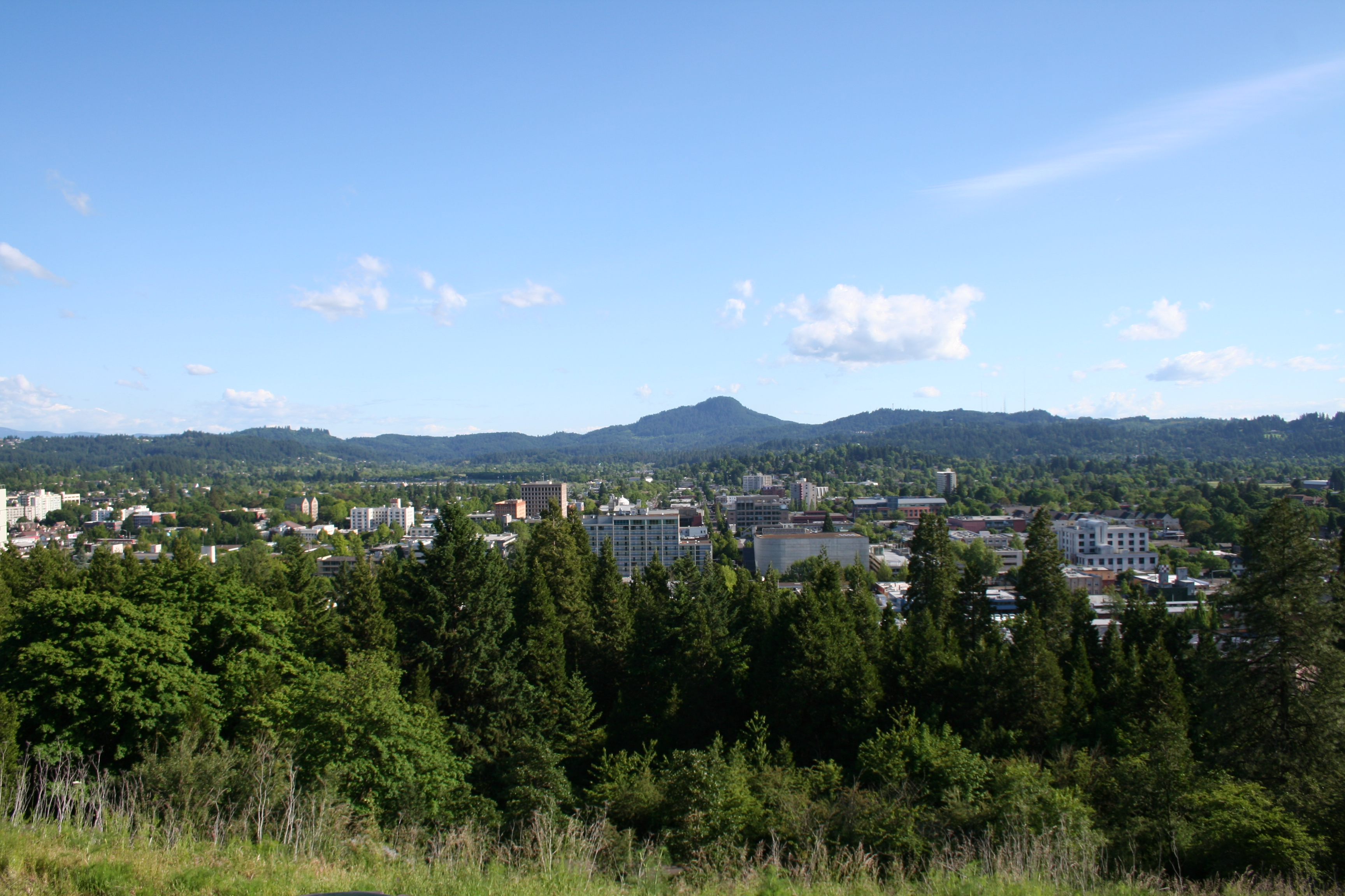Bikes And Blues Triangle Lake Oregon Downtown Eugene as seen from