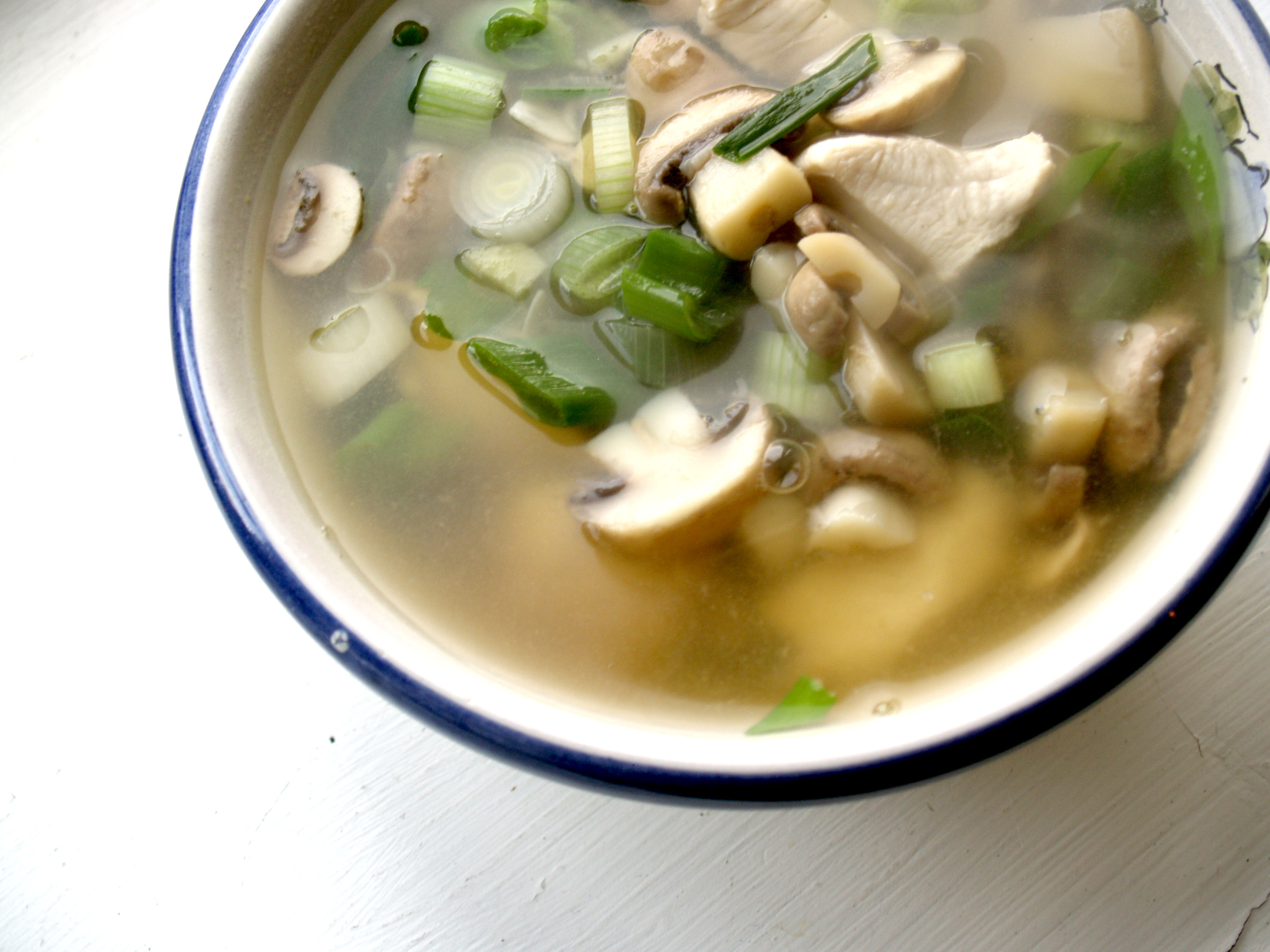 Fileflickr Cyclonebill Suppe Med Kylling Svampe Og Forårsløg