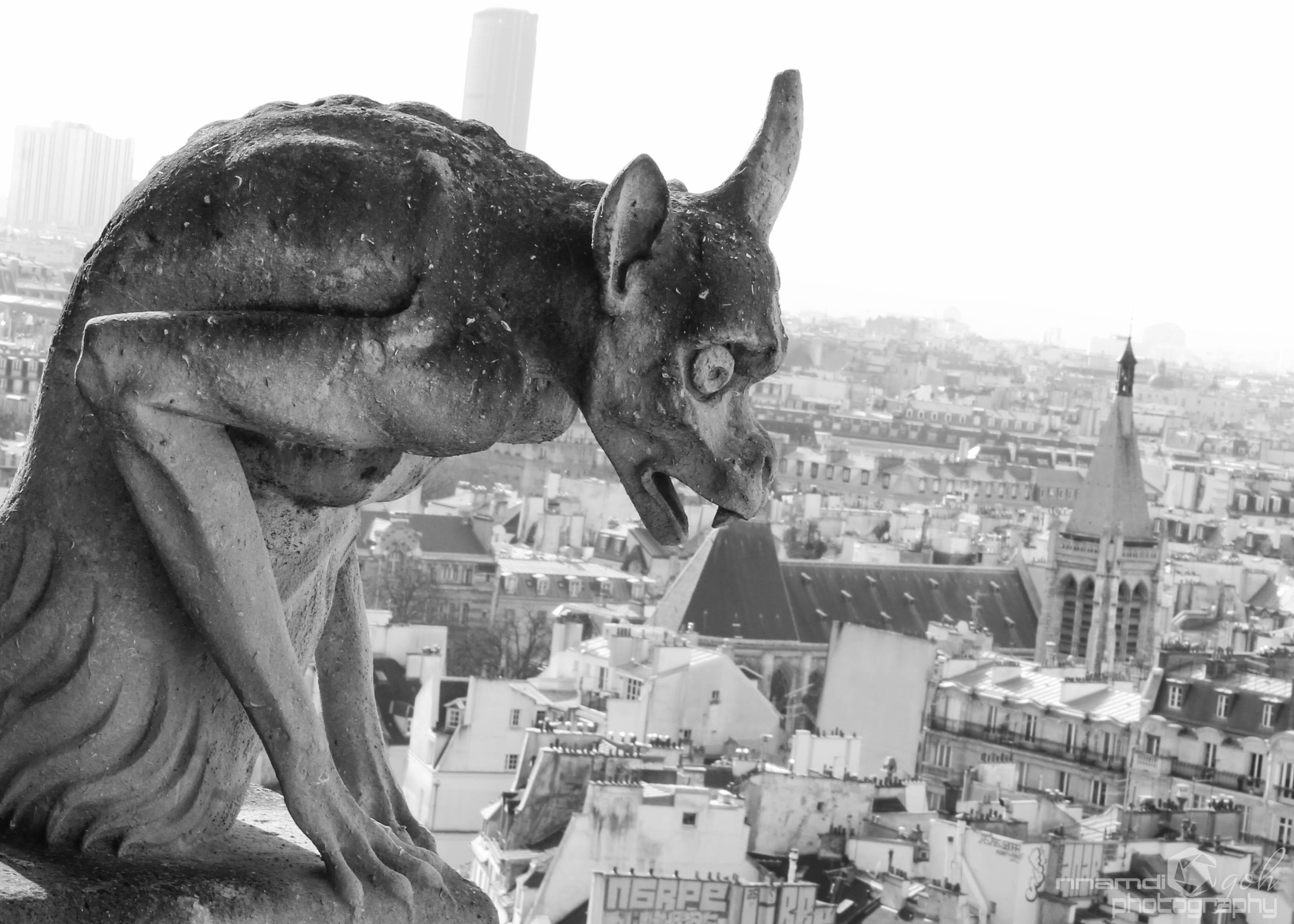 File:Gargoyles of Notre Dame.jpg - Wikimedia Commons