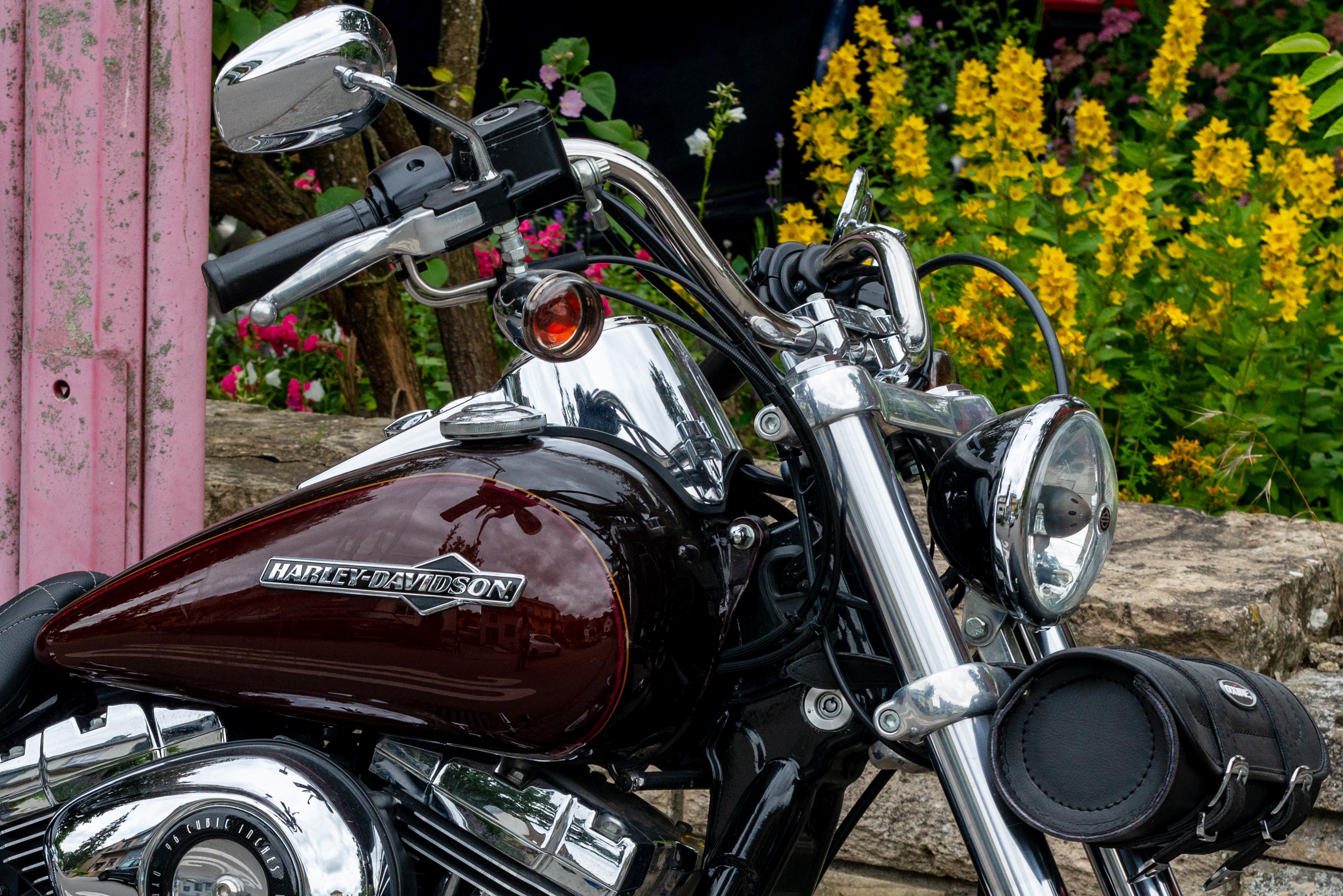 File:Harley-Davidson Dyna Super Glide Custom, Diddeleng-102