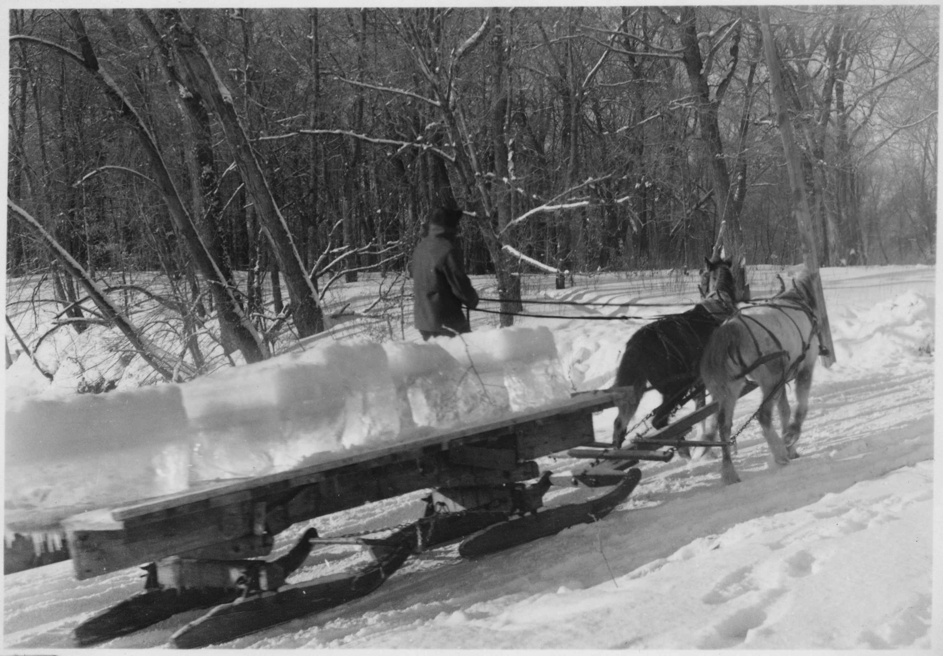 Logging Sled http://commons.wikimedia.org/wiki/File:Hauling_cut_ice_on_horse_drawn_sled_-_NARA_-_285734.jpg