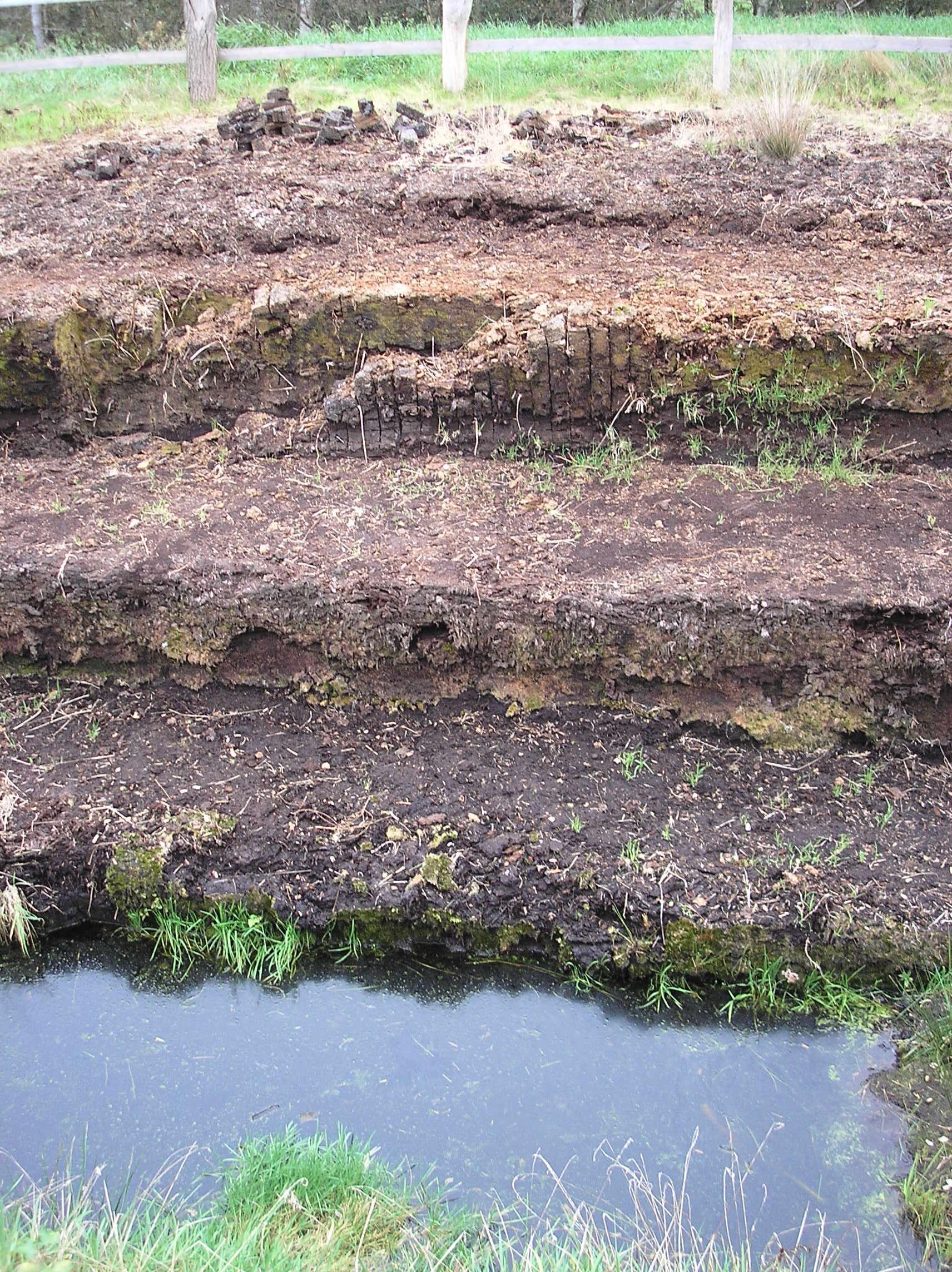 Huvenhoops Moorschichtung.jpg