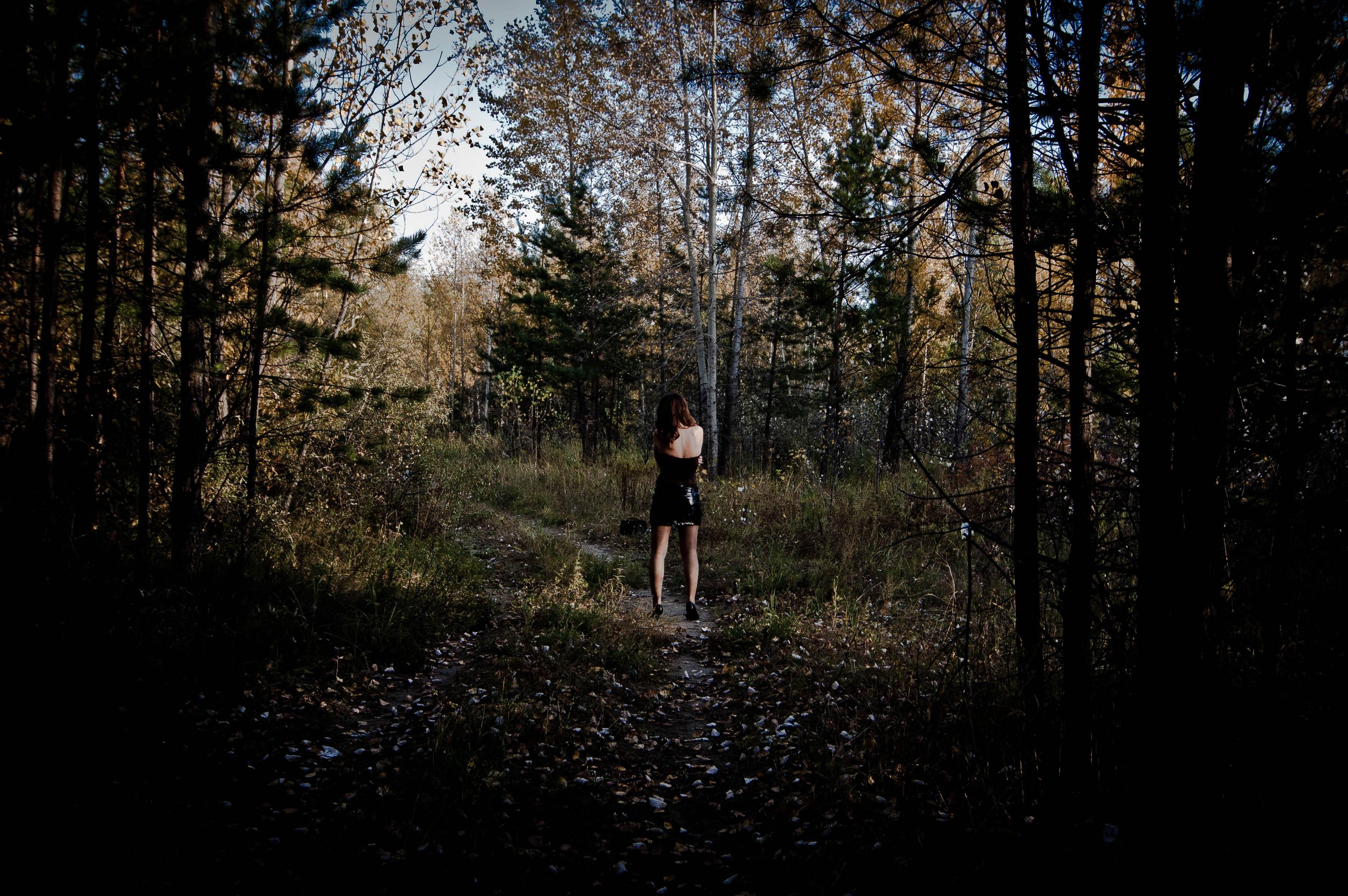 File In The Dark Woods 5107954480 Jpg