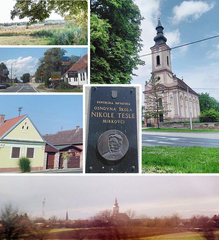Mirkovci Wikipedia