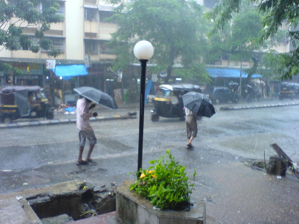 a day of heavy rain essay