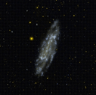 NGC 4236 I FUV g2006.jpg