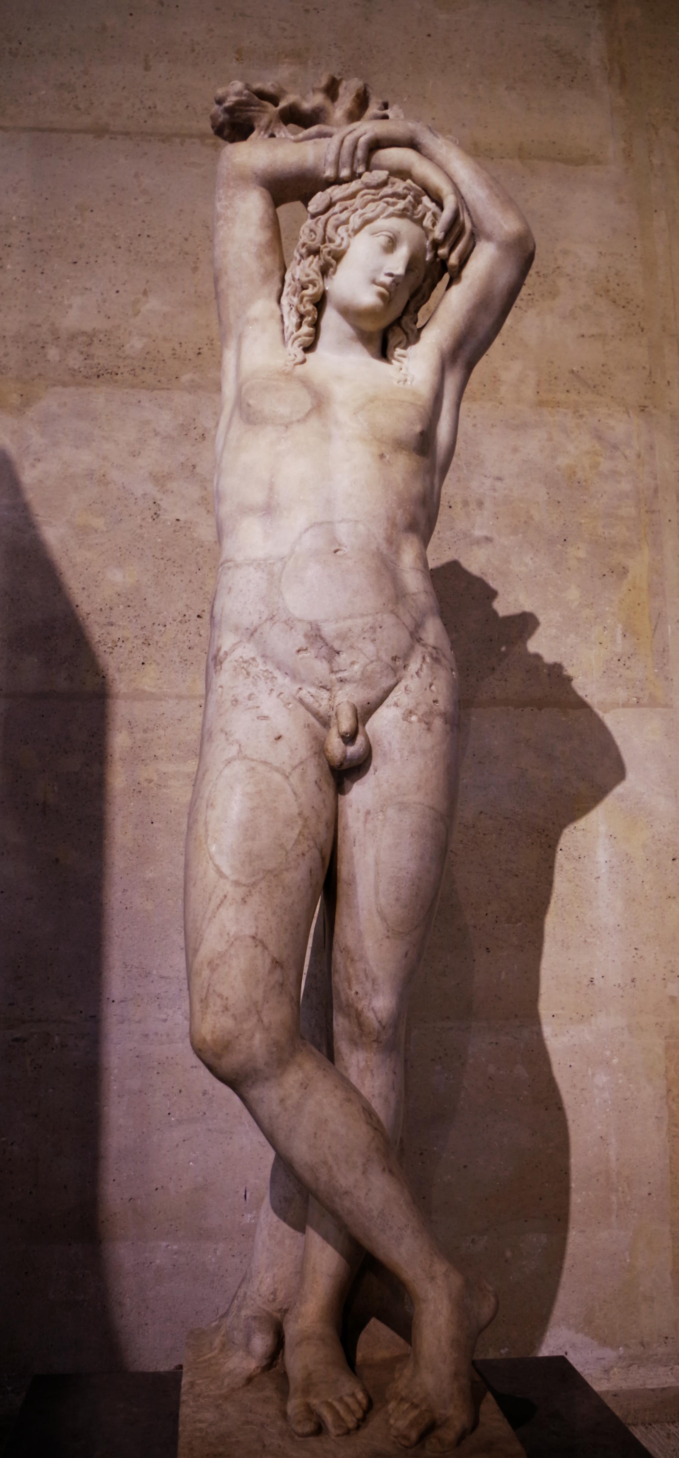 Hermaphrodite File:Narcisse - Hermaphrodite