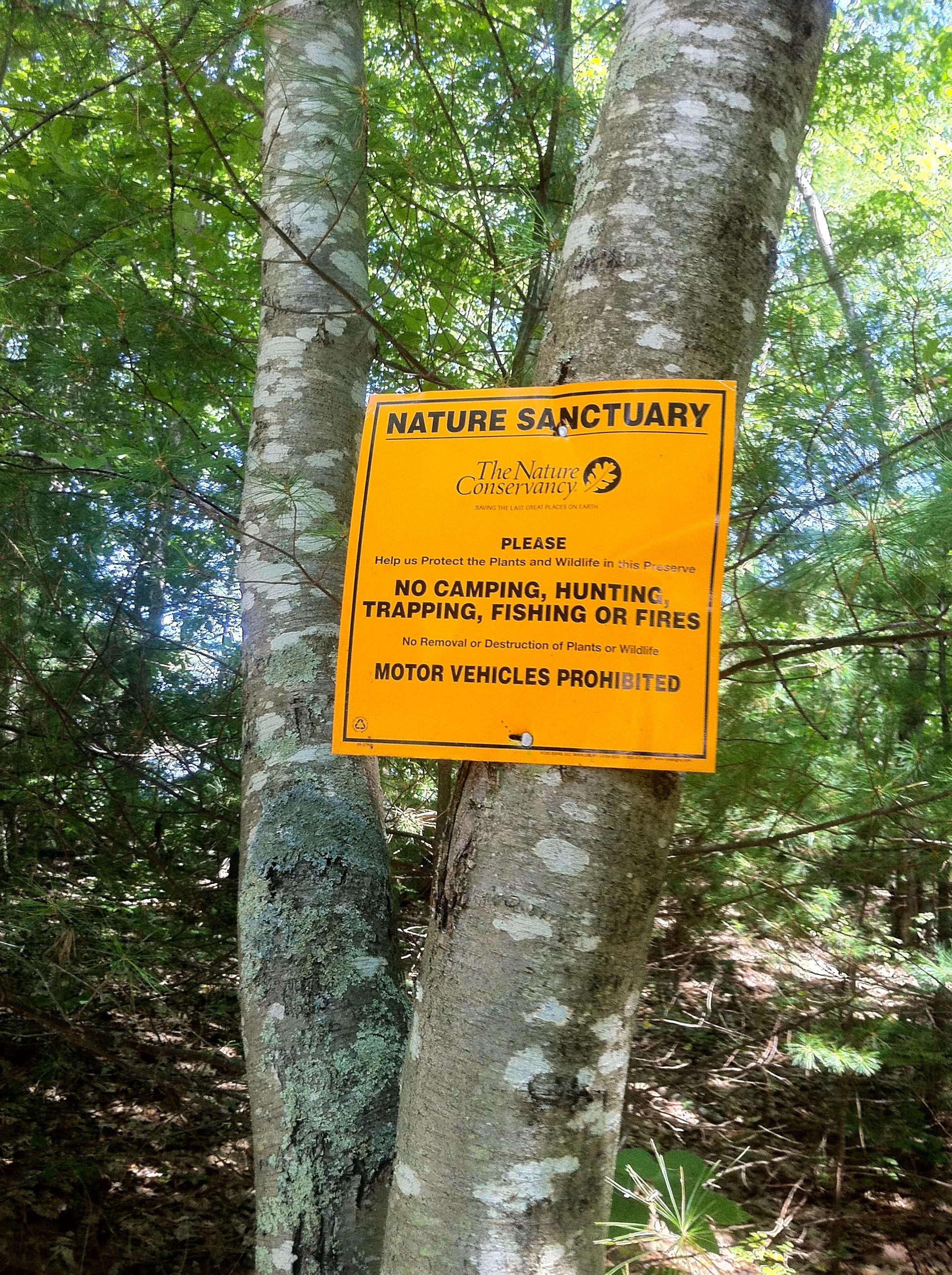 Nature: nature conservancy