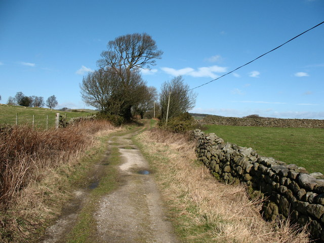 On the Nidderdale Way - geograph.org.uk - 712064