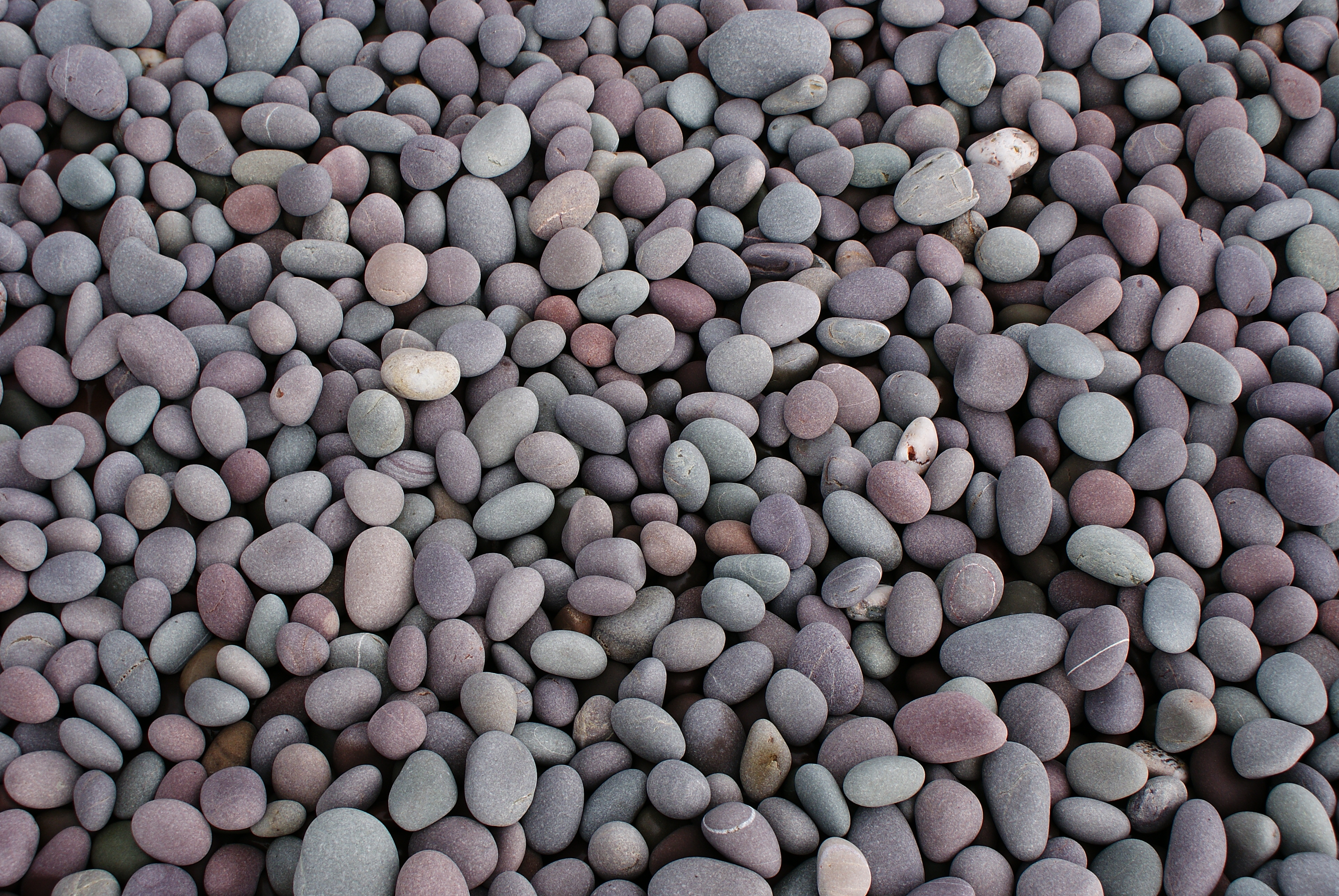 File wikipedia for Beach rocks for landscaping