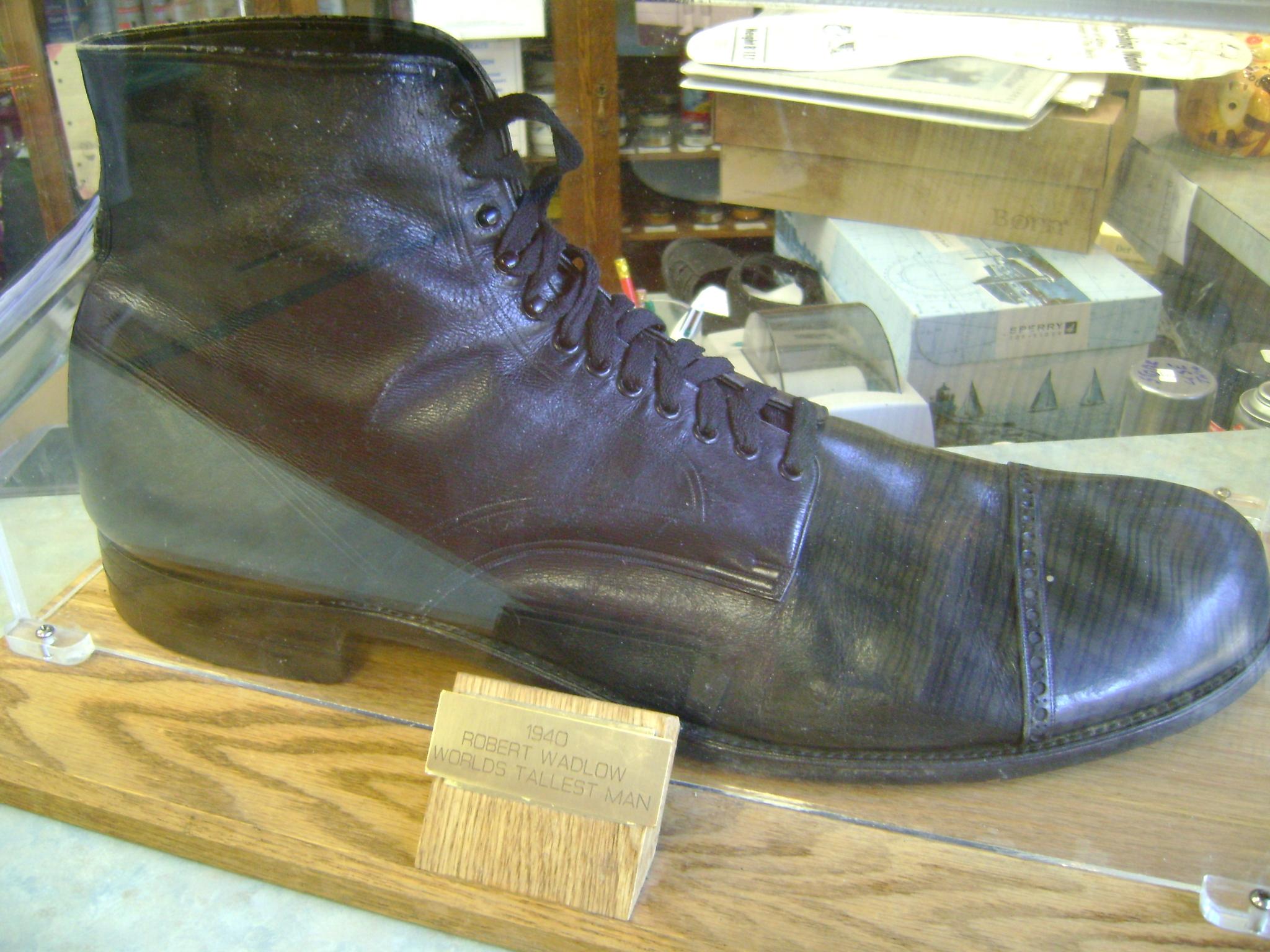 Earth Shoe Size