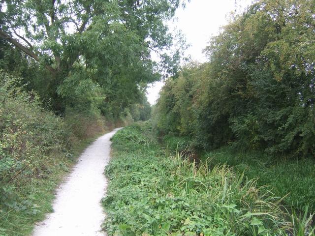 Shrewsbury Canal - geograph.org.uk - 1504810