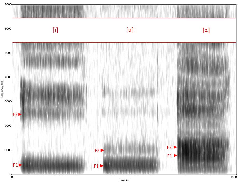 Espectrograma de las vocales inglesas i, u, ɑ. [http://commons.wikimedia.org/wiki/File:Spectrogram_-iua-.png]