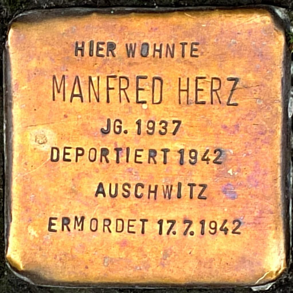 Stolperstein Manfred Herz Hilden.jpg