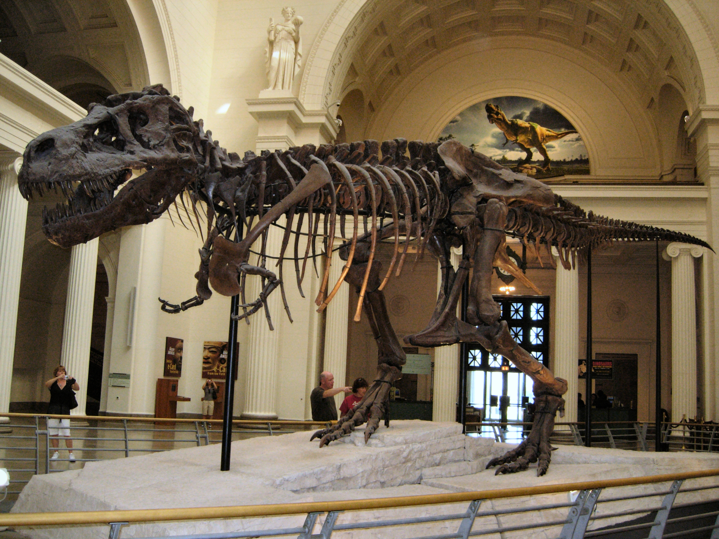 National Museum Of Natural History Facts