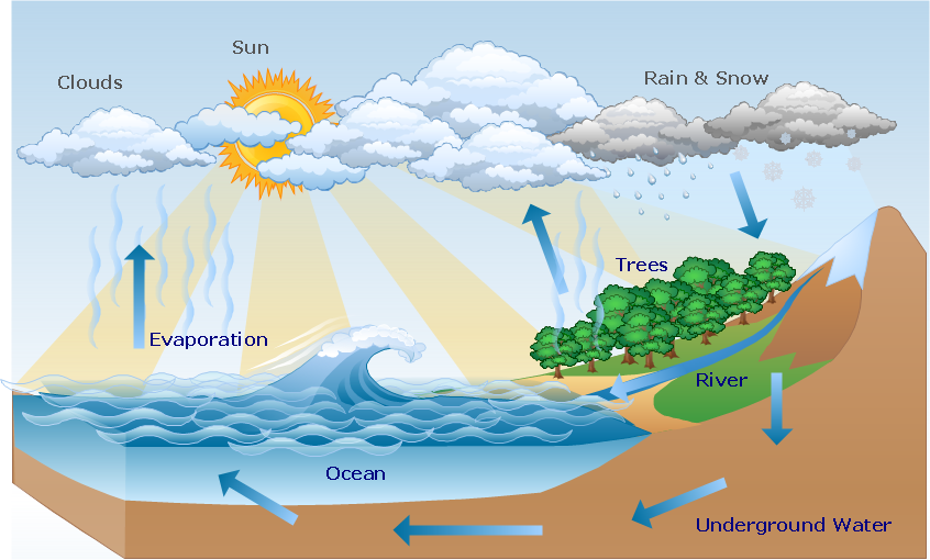 u015e u0259kil suyun t u0259bi u0259td u0259 d u00f6vran u0131 png vikipediya Transpiration Clip Art water cycle diagram clipart