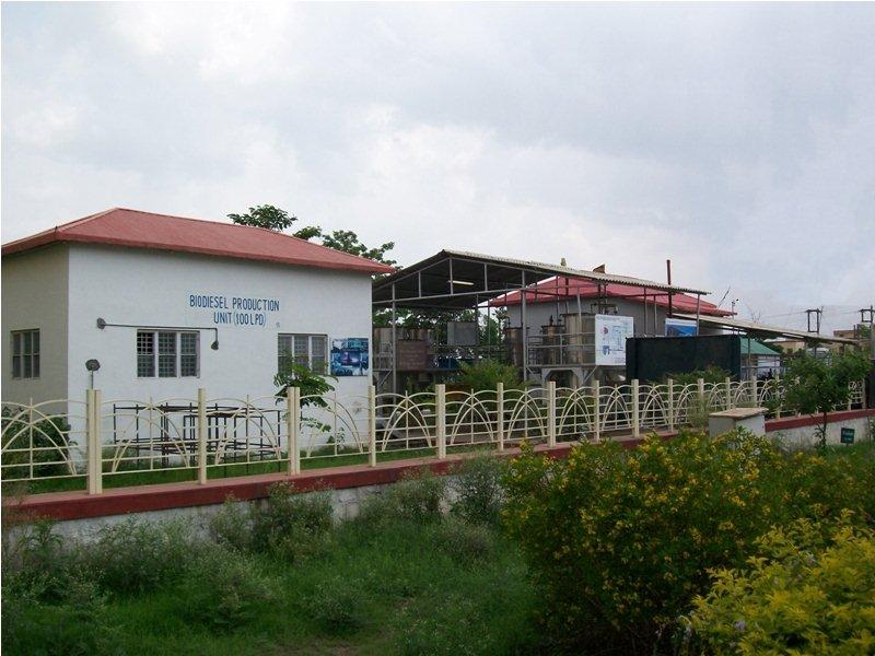 File:UIT RGPV Bhopal's Biodiesel plant.jpg