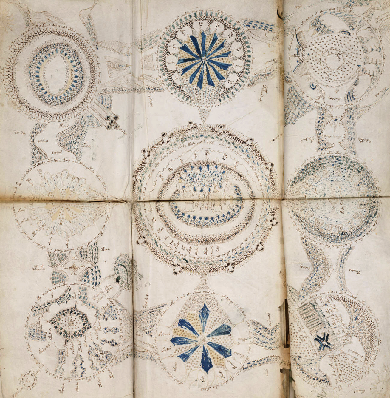 http://upload.wikimedia.org/wikipedia/commons/7/77/Voynich_manuscript_cosmological_example_86v_crop.jpg