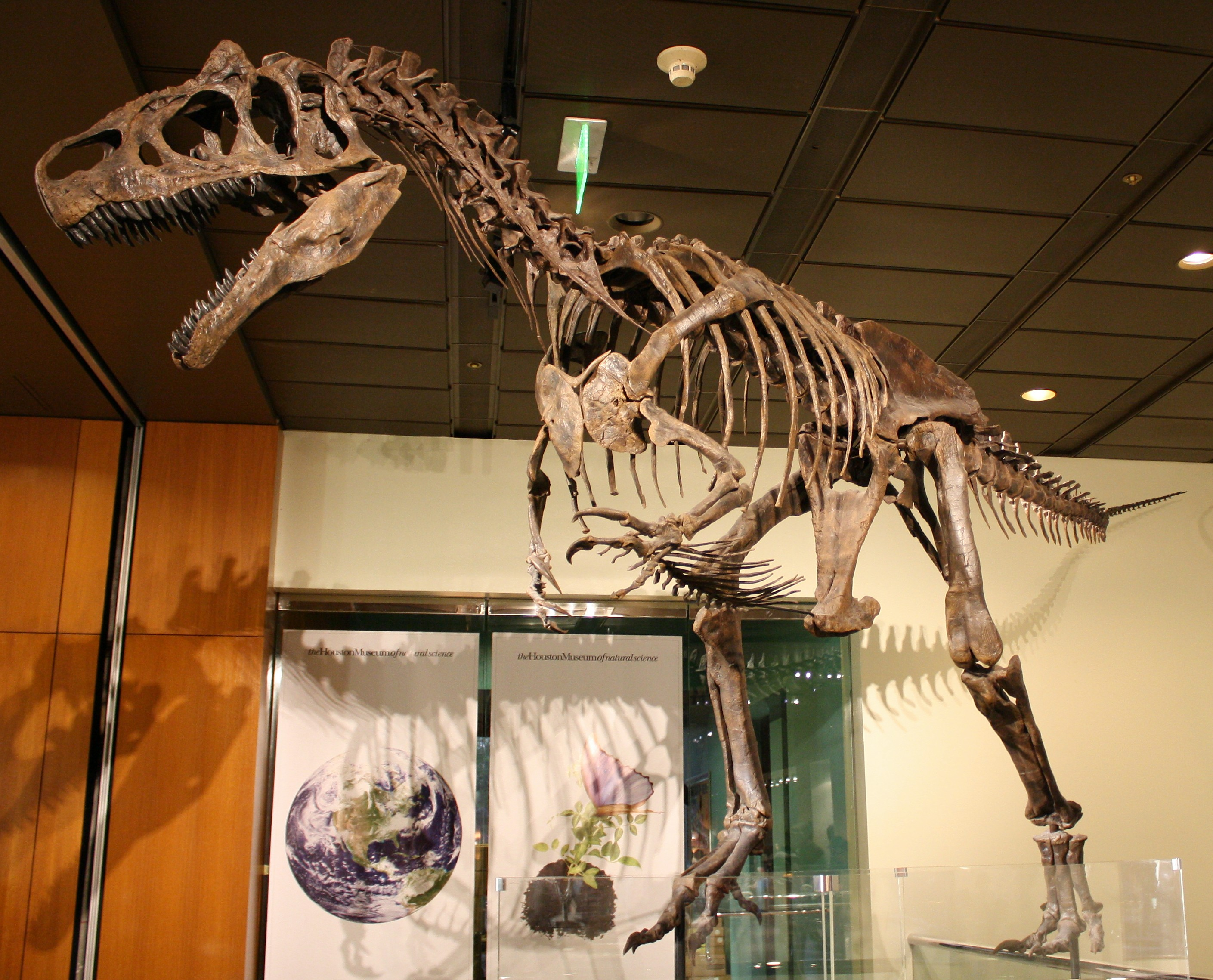 Wyoming Museum Of Natural History