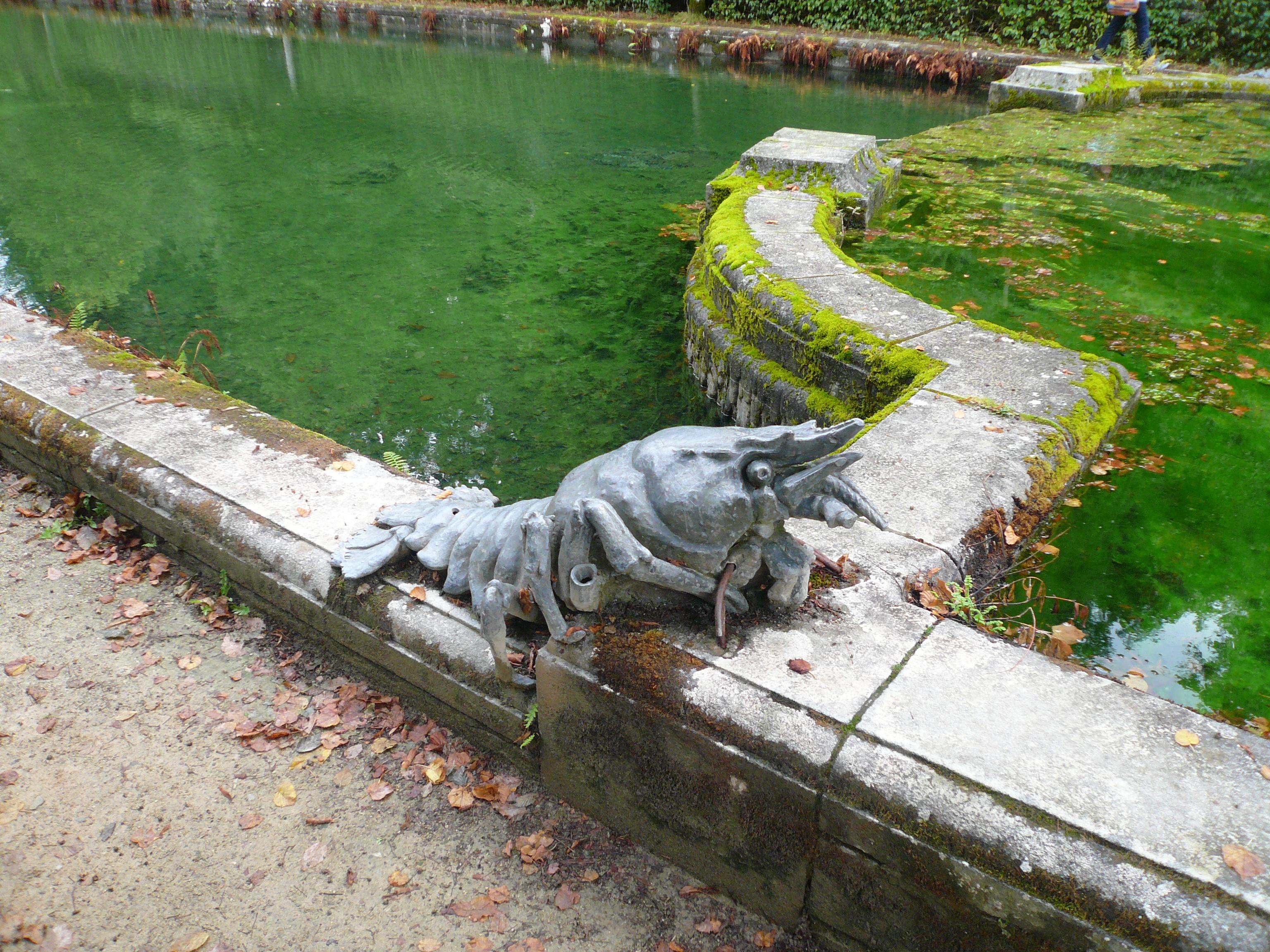 Nos Amours de Plumes et de Poils :: Installation d'un bassin a poison d'an mon