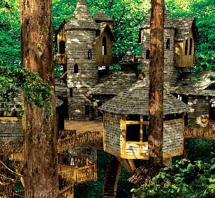 Exellent home design tree house design for Cool tree house plans