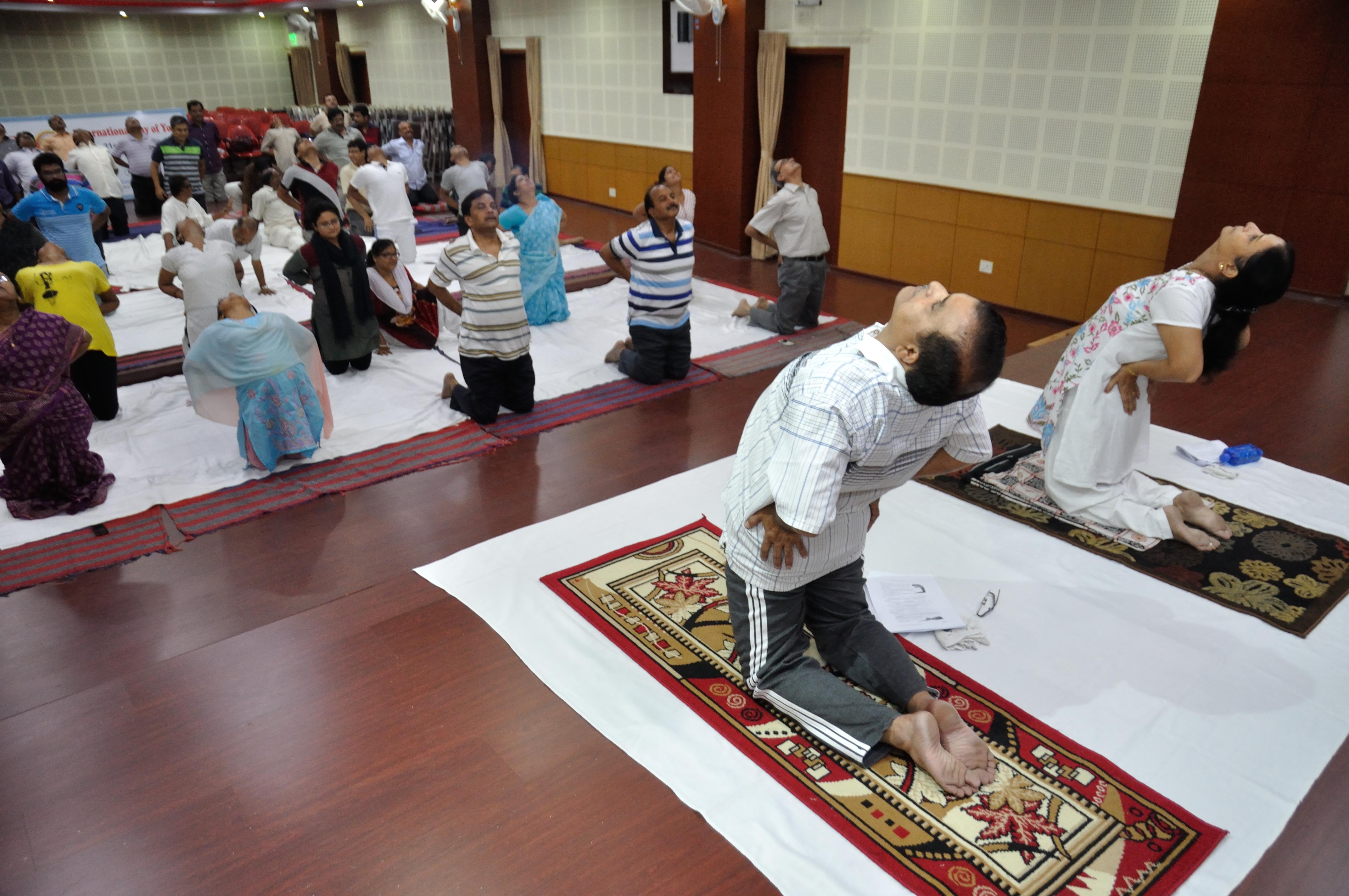 Ustrasana Sanskrit