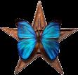 Barnstar-butterfly.png