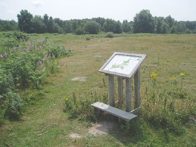 Chailey common nature reserve