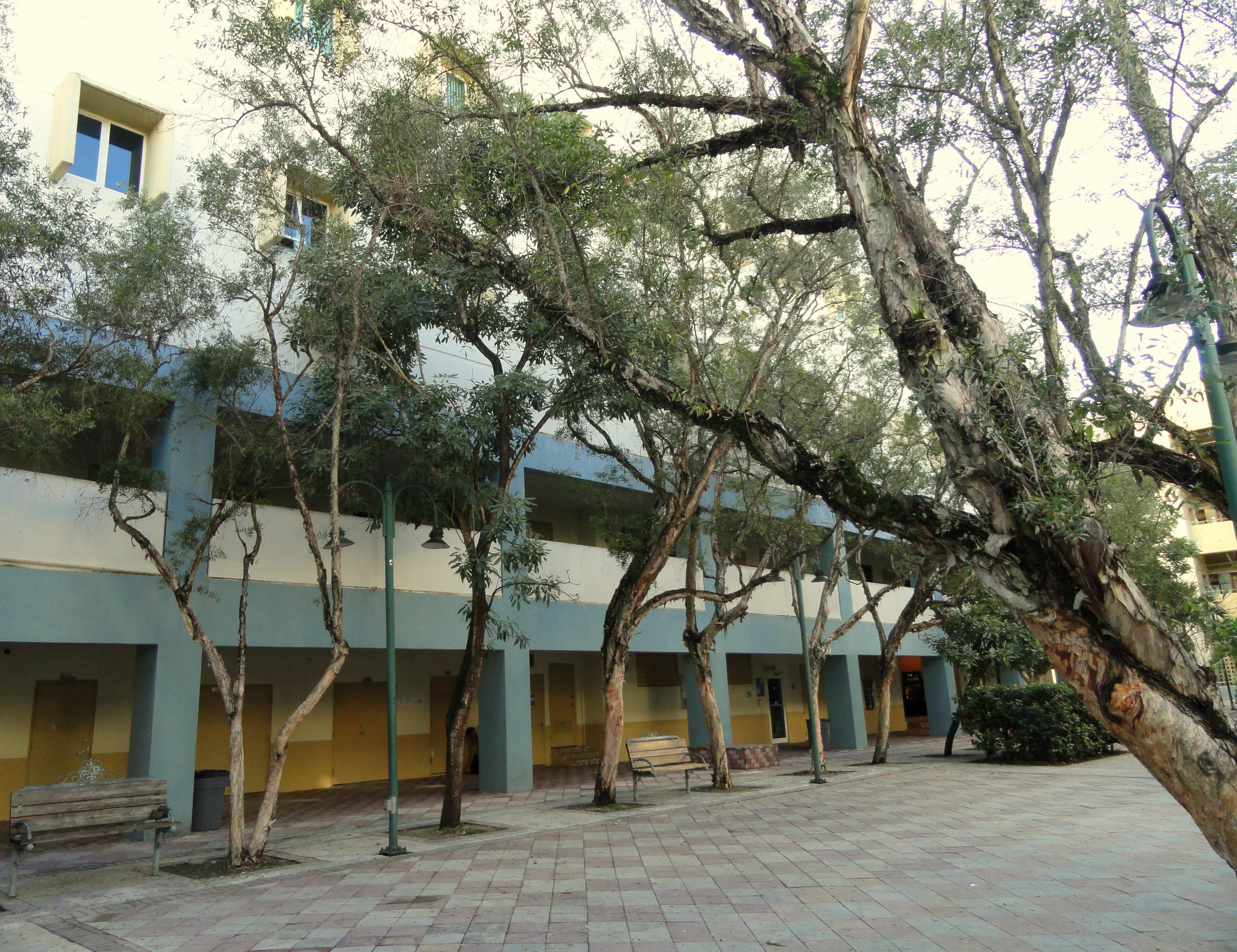 Polytechnic University of Puerto Rico pr University of Puerto Rico