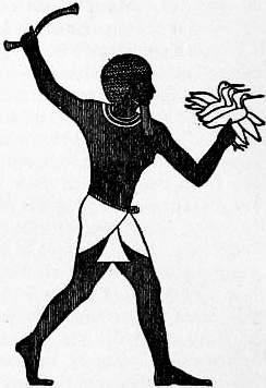 EB1911 Costume Fig. 1.—Egyptian Loin-cloth.jpg