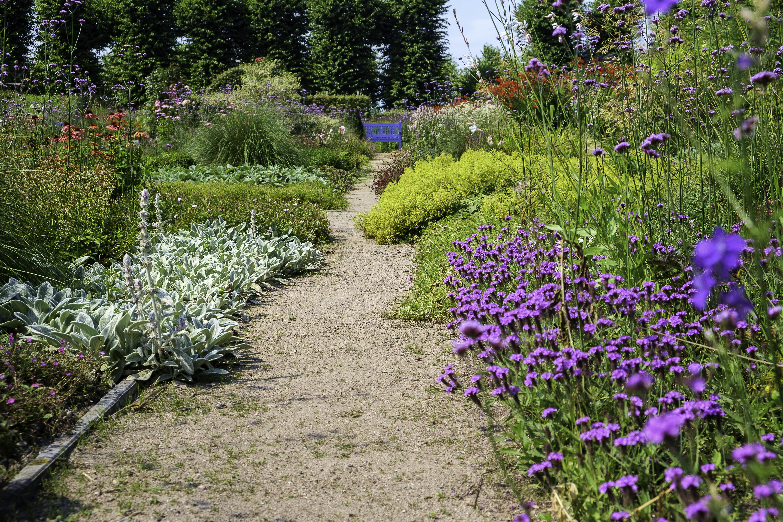 Bloem En Tuin : Bestand:ewsum bloementuin 3 .jpg wikipedia