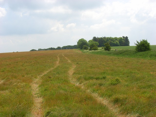 Farmland on East Ginge Down - geograph.org.uk - 837897