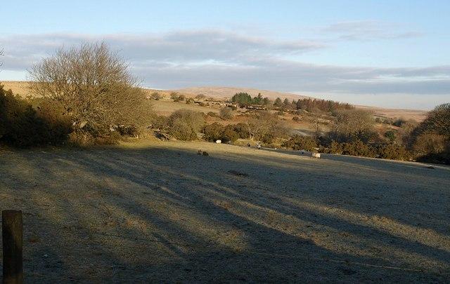 Field near Scorhill Farm - geograph.org.uk - 1710409