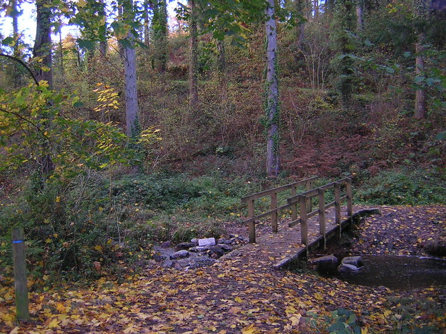 Footbridge over the stream Eggesford Forest - geograph.org.uk - 1474402