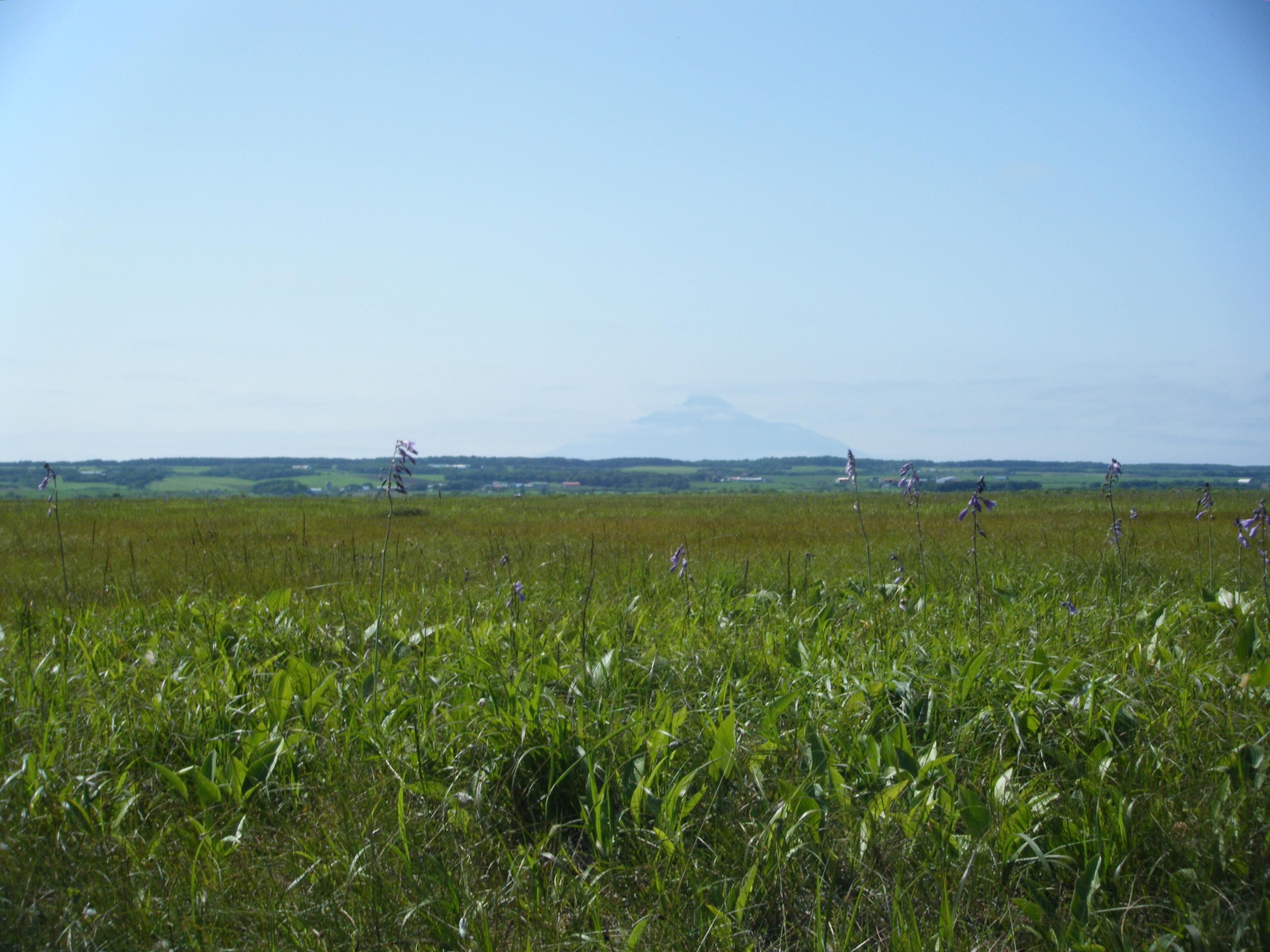 Description Hokkaido  Sarobetsu Plain jpgPlain Pictures