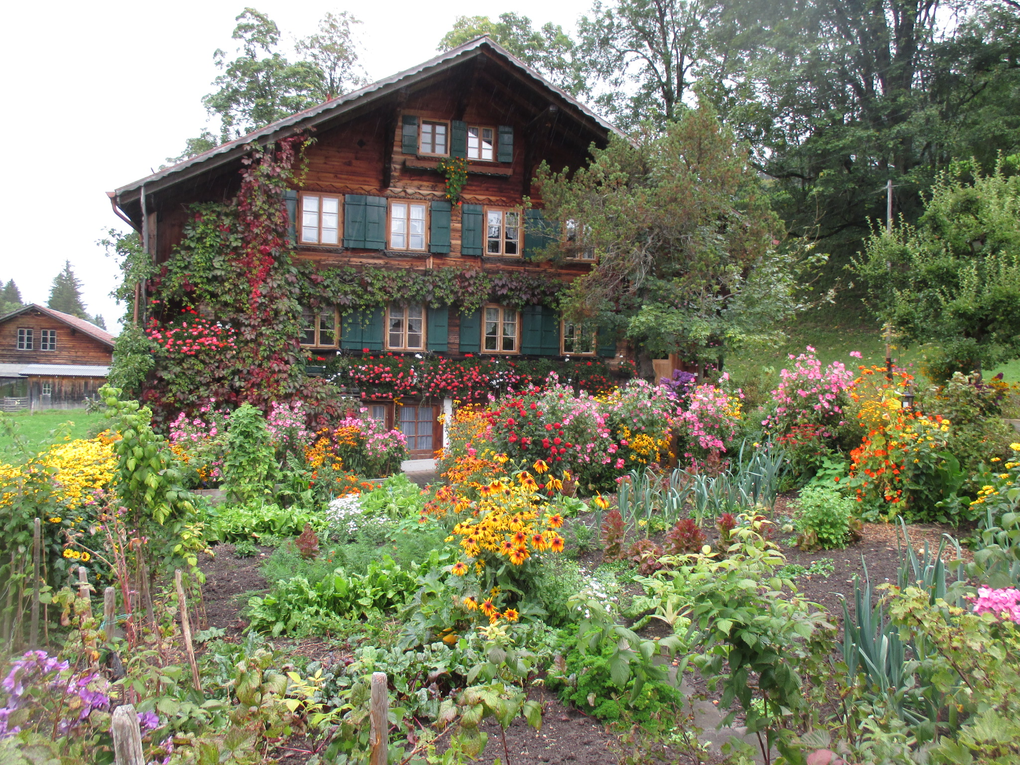 File jardin potager wikimedia commons for Jardin potager 78