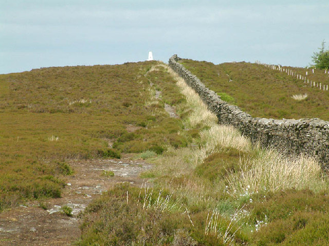 Longridge Fell - geograph.org.uk - 7950