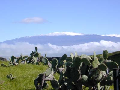 Mauna Kea with snow making its summit more spectacular against the blue sky
