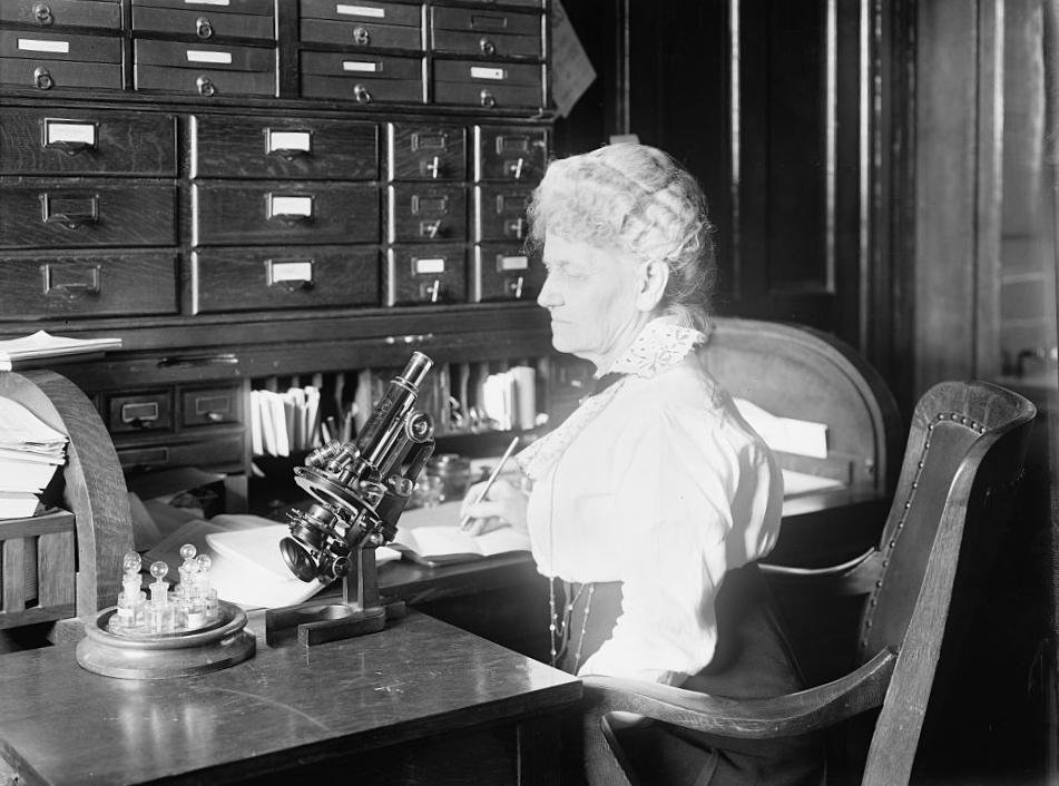image of Flora Wambaugh Patterson