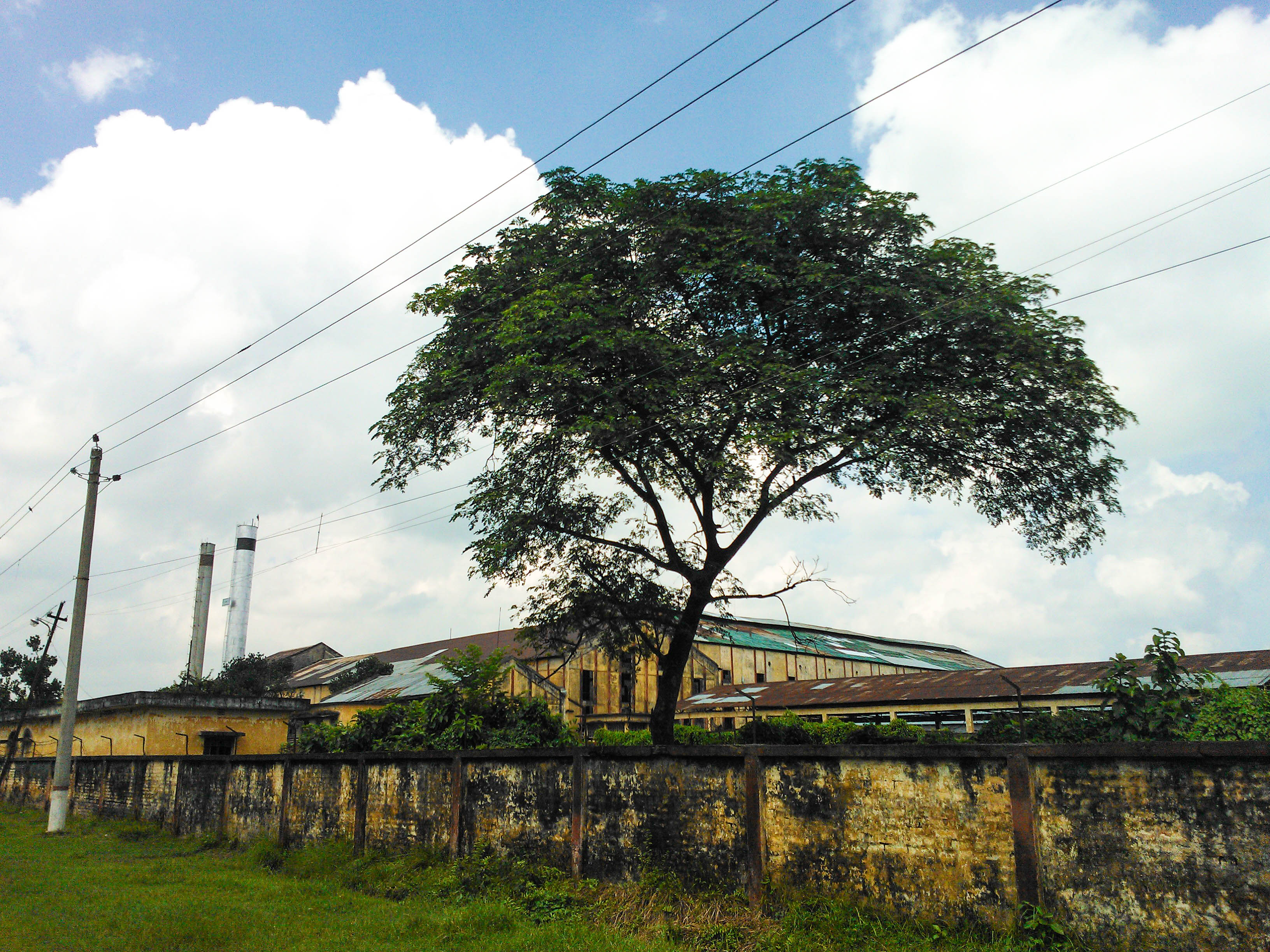 File:Rajshahi Sugar Mills Ltd. (Harian Suger Mill)3.jpg