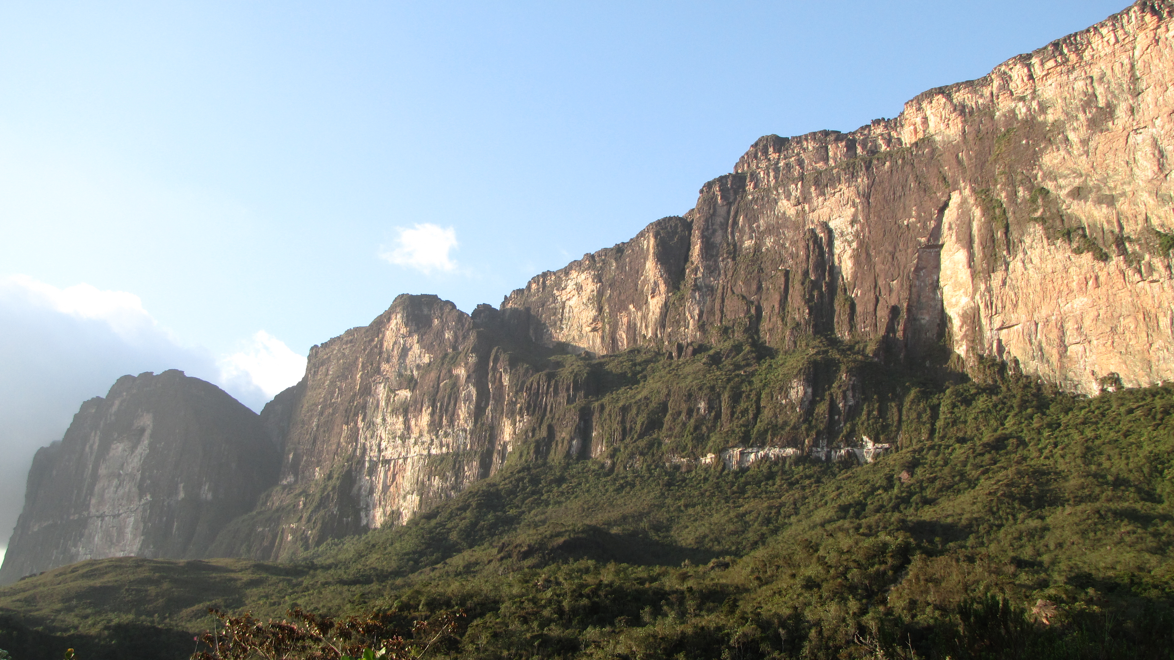Image Result For Roraima
