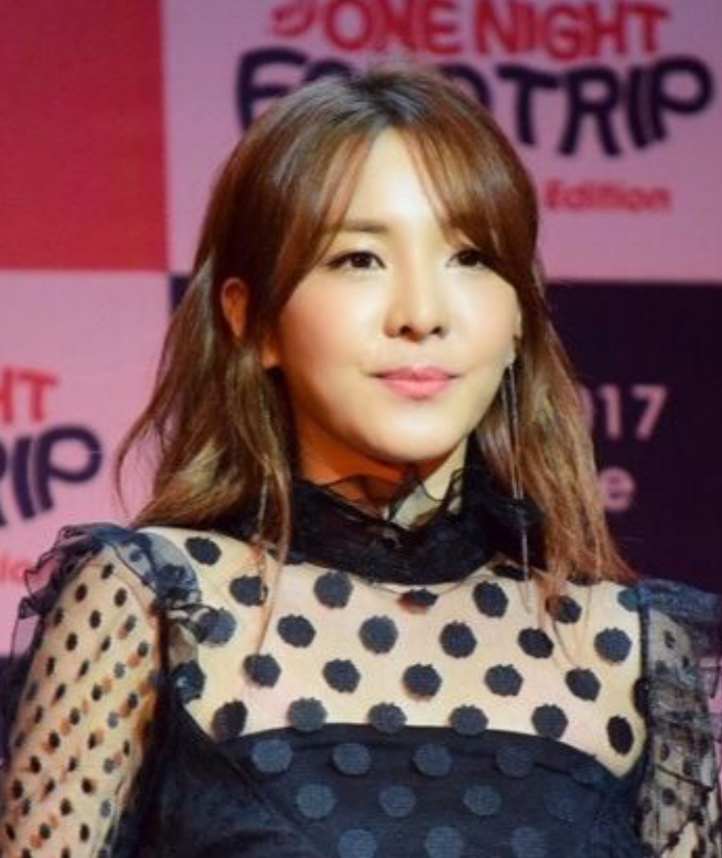 The 33-year old daughter of father (?) and mother(?) Sandara Park in 2018 photo. Sandara Park earned a  million dollar salary - leaving the net worth at 15 million in 2018