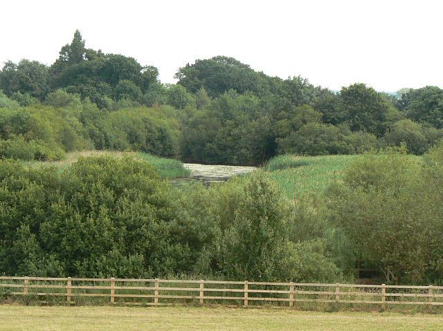 Skylarks Nature Reserve - geograph.org.uk - 1386202
