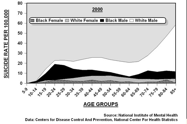 Va Benefits Pay Chart: Suicide rates in U.S. by gender and race (2000).jpg ,Chart