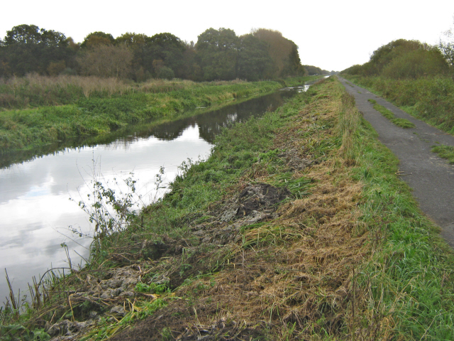 The Glastonbury Canal and cycle track, Shapwick Heath (geograph 2672000)