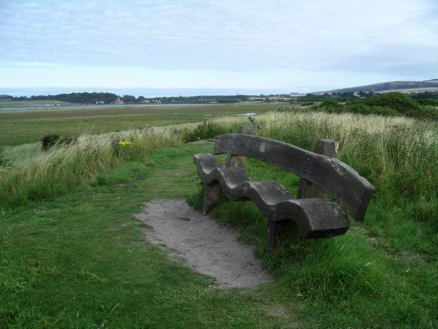 Unusual bench, John Muir Country Park - geograph.org.uk - 219885