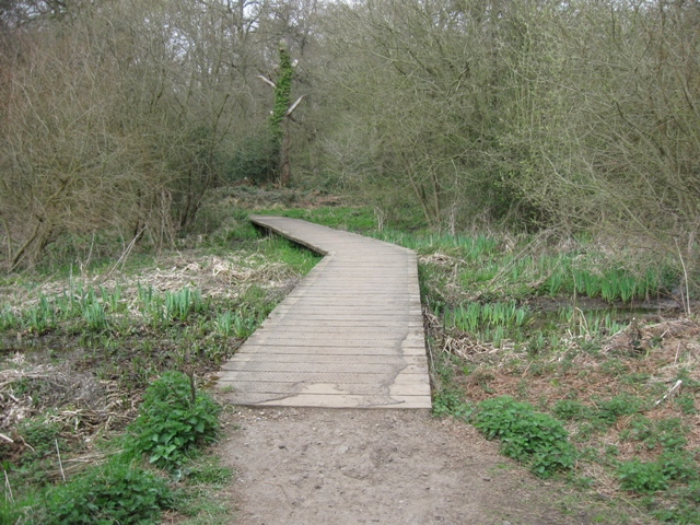 Walkway across the Marsh, Bookham Common - geograph.org.uk - 1237611